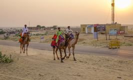 Riding camel on desert royalty free stock images