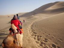 Riding a Camel in A Part of Silk Road in Dunhuang Desert. Travel. In Dunhuang City, Gansu, China. in 2013, October 14th Royalty Free Stock Photos