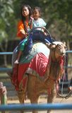 Riding camel Royalty Free Stock Photo