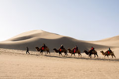 Riding camel on silk road. Dunhuang,Gansu, China - October 11, 2014: Group of tourists are riding camels in the desert at Dunhuang City , China. This place is a Royalty Free Stock Photos