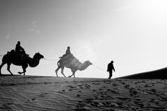 Riding camel on silk road monotone image. Riding camel on silk road Stock Image