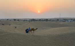 Riding camel on Thar Desert in Jaisalmer, India stock photography