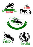 Riding club, horse racing and polo game design. Equestrian sporting symbols with black and green silhouettes of running, jumping and rearing up horses with Stock Photo