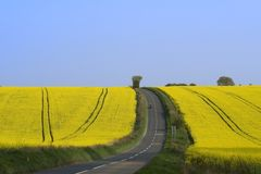 Riding in the countryside. A motorbike rides up a hill with fields of yellow rapeseed either side Royalty Free Stock Photography