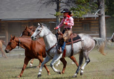 Riding Cowgirl. Cowgirl riding grey horse with other horses and ranch house in background royalty free stock images