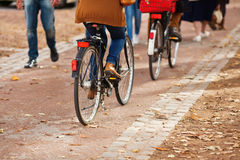 Riding cyclists Royalty Free Stock Photo