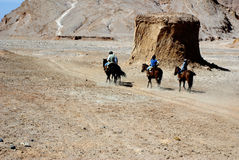 Riding in desert, Atacama, Chile Stock Photo