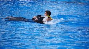 Riding a dolphin Stock Photo