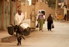 Riding a donkey Stock Photography