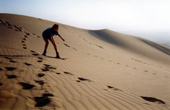 Riding the dunes. Sandboarding at sunset in Peru Stock Images