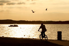 Riding at Dusk Royalty Free Stock Photos