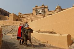 Riding an elephant down from the Amber palace complex Stock Images