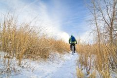 Riding fat bike in winter royalty free stock photo