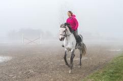 Riding in the fog Royalty Free Stock Photography