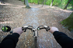 Riding through the forest Royalty Free Stock Photo