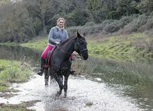 Free Riding Girl And Horse Stock Image - 214700121