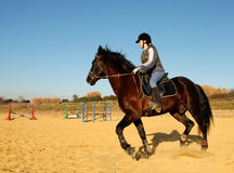 Riding girl and stallion Stock Photos