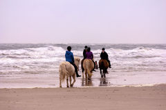 Riding girls on a beach Royalty Free Stock Photography
