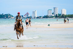Riding horse on the beach. Royalty Free Stock Photos