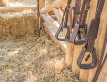 riding horse equipment Royalty Free Stock Photos