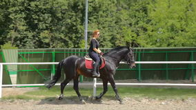 Riding a horse stock video footage