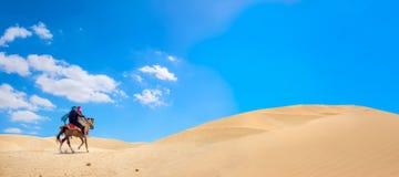 Riding on horse in Sahara desert. Safari tourism, Tunisia royalty free stock images