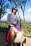 Riding horse at tagaytay Royalty Free Stock Photo