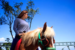 Riding horse at tagaytay Stock Photos
