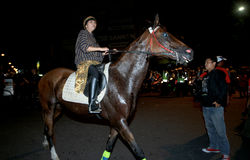Riding horse Royalty Free Stock Photo