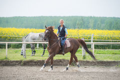 Riding horse Royalty Free Stock Photography