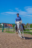 Riding horse Stock Photography
