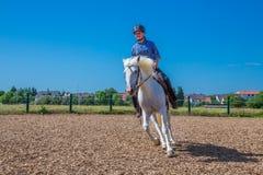 Riding horse Royalty Free Stock Photos