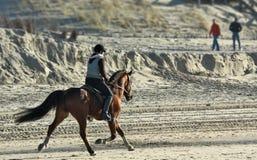 riding horseback пляжа Стоковое Фото
