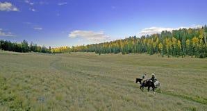 riding horseback сценарный Стоковое Фото