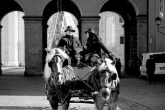 Riding horses in city center of Salzburg, Austria Royalty Free Stock Images