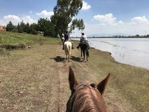 Horseback Riding Vacation in Mexico. Riding by a lake in rural Stock Images