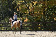 Riding Lesson Royalty Free Stock Photos