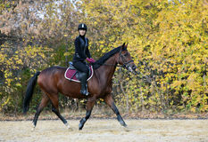 Riding lessons in the park in autumn Royalty Free Stock Images