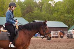Riding lessons, teenage girl and a horse royalty free stock photos