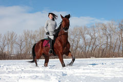 Riding lessons in the winter snow field Stock Images