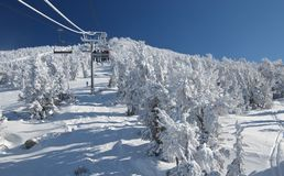 Riding a lift on a ski resort. Skiers are riding a ski lift on a skiing resort at Lake Tahoe on a very cold day after a heavy snowstorm. Seats, cables a pillars Royalty Free Stock Photo