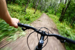 Riding mountain bike. In forest stock images