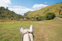Riding. In the nature in Minas Gerais, Brazil royalty free stock photography