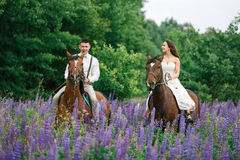 Riding the newlyweds on the field Royalty Free Stock Photos