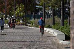 Bicyclist Riding the Path Stock Photo