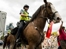 Riding police. Police on horse at rally in Perth,WA Stock Photography