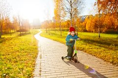 Riding scooter in sunny autumn park Royalty Free Stock Images