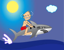 Riding a Shark Stock Image