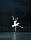 Riding the wind, there I would fly-ballet Swan Lake Royalty Free Stock Photos