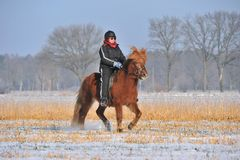 Riding in Winter Stock Photo